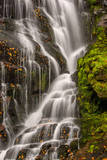 USA, North Carolina, Brevard. Waterfall in Dupont State Forest Photographic Print by  Jaynes Gallery