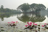 Thailand, Sukhothai. Water Lilies in Front of Wat Traphang Nguen Photographic Print by Kevin Oke