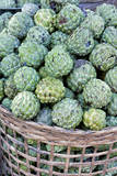 Myanmar. Custard Apples Photographic Print by Charles Cecil