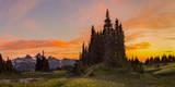 Sunset at Mazama Ridge Above Paradise, Mt. Rainier, Washington, USA Photographic Print by Gary Luhm