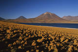 Chile, Altiplano, Los Flamencos National Reserve, Miscanti Lake Photographic Print by Andres Morya Hinojosa