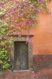 Mexico, San Miguel De Allende. Bougainvillea Outside Wooden Doorway Photographic Print by  Jaynes Gallery