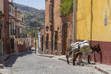 Mexico, San Miguel De Allende. Two Laden Donkeys on Sidewalk Photographic Print by  Jaynes Gallery