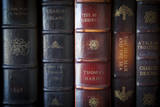 Collection of Classic Antique Books from Historic Authors Photographic Print by Brian Jannsen
