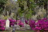 Azaleas and Headstones in Bonaventure Cemetery, Savannah, Georgia, USA Photographic Print by Joanne Wells
