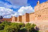 Ruins of the El Badii Palace, Marrakech, Morocco Photographic Print by Nico Tondini
