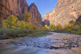 USA, Utah, Zion National Park, Virgin River and Cottonwood Trees Photographic Print by Jamie & Judy Wild