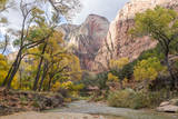 USA, Utah, Zion, Virgin River with Footbridge and Cottonwood Trees Photographic Print by Jamie & Judy Wild