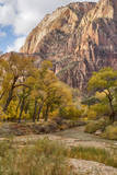 USA, Utah, Zion National Park, Virgin River in Zion Canyon Photographic Print by Jamie & Judy Wild