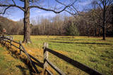 USA, New Jersey, Hunterdon, Mountainville, Sheep (Ovis Ammon Aires) Photographic Print by Alison Jones