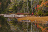 USA, Maine, Fall Reflections at Eagle Lake in Acadia National Park Photographic Print by Joanne Wells