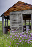 USA, Washington, Palouse. Homestead Surrounded by Wildflowers Photographic Print by Terry Eggers