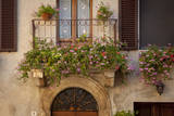 Flowers on Home in Piezna, Tuscany, Italy Photographic Print by Brian Jannsen