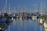 Boats at Nelson Marina, Nelson, South Island, New Zealand Photographic Print by David Wall