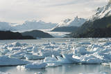 Chile, Patagonia, Icebergs in Lake Grey, Torres Del Paine Photographic Print by Andres Morya Hinojosa