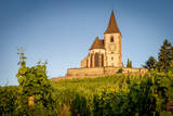 Church of St. Jacques and Vineyards, Hunawihr, Alsace, France Photographic Print by Brian Jannsen