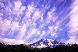Mount Rainier Photographic Print by Craig Tuttle