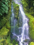 Waterfall Photographic Print by Craig Tuttle