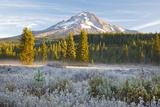 Morning Frost in Meadow, Mt. Hood, Oregon. Photographic Print by Craig Tuttle