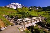 Mount Rainier and Footbridge Photographic Print by Craig Tuttle