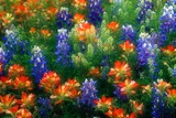 Bluebonnets and Paint Brush Photographic Print by Darrell Gulin