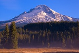 Mount Hood and National Forest Photographic Print by Craig Tuttle