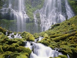 Moss-Covered Rocks in Proxy Falls Photographic Print by Craig Tuttle