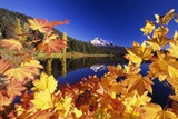 Fall Colors at Trillium Lake Photographic Print by Craig Tuttle