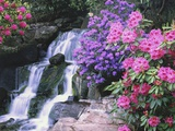 Waterfall in Crystal Springs Garden Photographic Print by Craig Tuttle