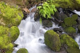 Waterfall and Mossy Rocks Photographic Print by Craig Tuttle
