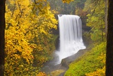 Fall Colors Add Beauty to North Middle Falls, Silver Falls State Park, Oregon, Pacific Northwest Photographic Print by Craig Tuttle