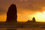 The Needles at Cannon Beach Photographic Print by Craig Tuttle