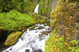 Tanner Creek Falls, Columbia River Gorge National Scenic Ates, Oregon Photographic Print by Craig Tuttle