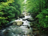 Tallulah River Photographic Print by James Randklev