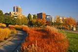 The Garden at South Waterfront Park, Portland Oregon, Pacific Northwest Photographic Print by Craig Tuttle
