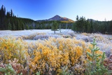 Morning Frost Adds Beauty to Broken Top, Three Sisters Wilderness, Oregon Cascades Photographic Print by Craig Tuttle