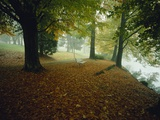 Quiet Park in Autumn Photographic Print by Craig Tuttle