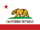 California State Flag Poster Print Art