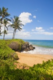 Secluded Po'Olenalena Beach on Maui Reproduction photographique par Ron Dahlquist