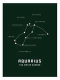 Astrology Chart Aquarius Posters
