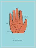 Palmistry Chart Stretched Canvas Print