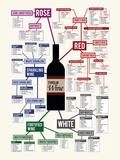 Types of Wine Chart Art