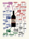 Types of Wine Chart Art