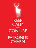 Keep Calm and Conjure a Patronus Charm Carry On Spoof Poster Print Prints