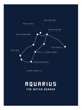 Astrology Chart Aquarius Prints