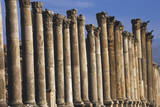 Columns of Cardo Maximus St. Jerash, Jordan Photographic Print by Claudia Adams