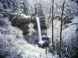 Forest Surrounding Wintry Waterfall Photographic Print by Craig Tuttle
