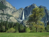 Yosemite Falls Photographic Print by James Randklev