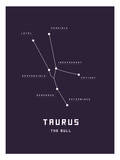 Astrology Chart Taurus Posters