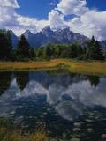 Shallow Pond Near Teton Range Fotografisk trykk av James Randklev